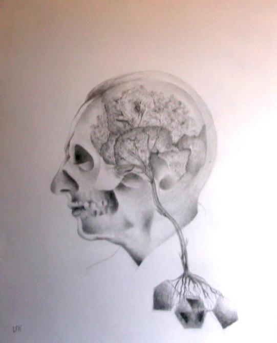 La marcela entre la vida y la muerte - De Luis Ferreira